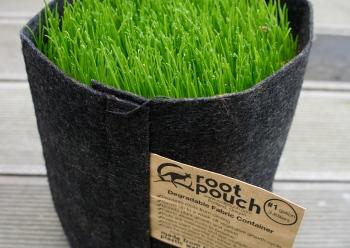 Root Pouch 4 Liter mit Gras