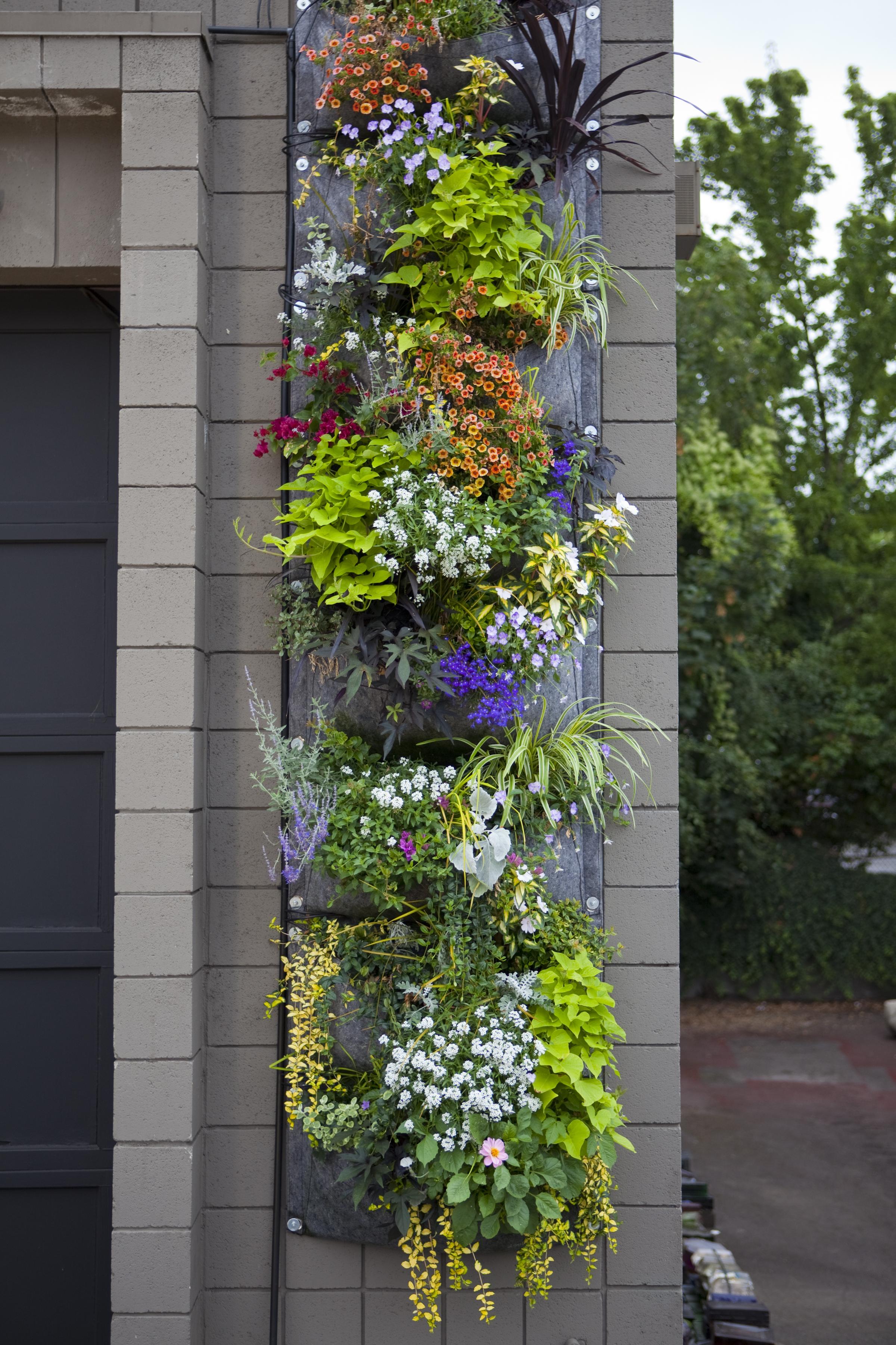 Woraus werden die root pouches gemacht root pouch for Flower wall garden