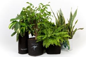 verschiedene Root Pouches - die Alternative zu herkömmlichen Plastiktöpfen