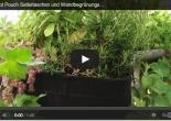 video zu rootpouch vertikalen gärten